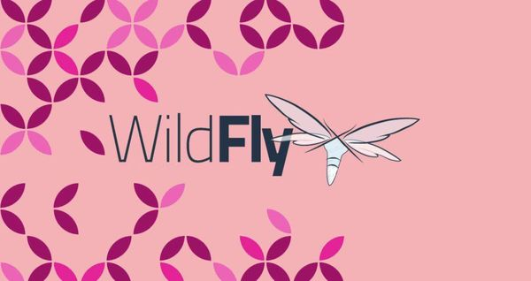 如何在Debian 9上安装WildFly(JBoss)
